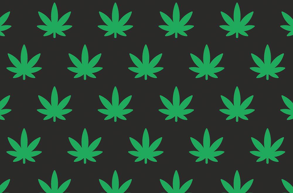 HOME_cannabis.jpg